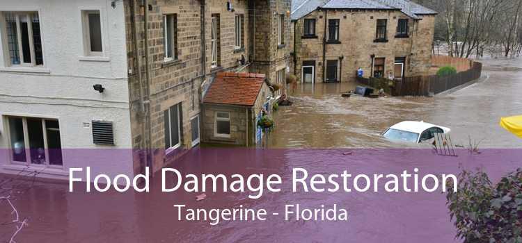 Flood Damage Restoration Tangerine - Florida