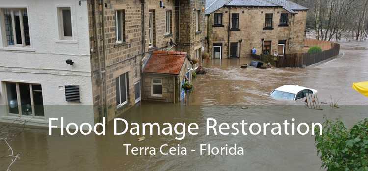 Flood Damage Restoration Terra Ceia - Florida
