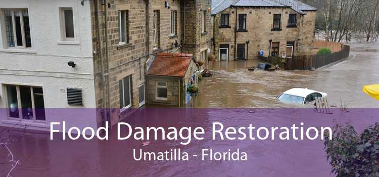 Flood Damage Restoration Umatilla - Florida