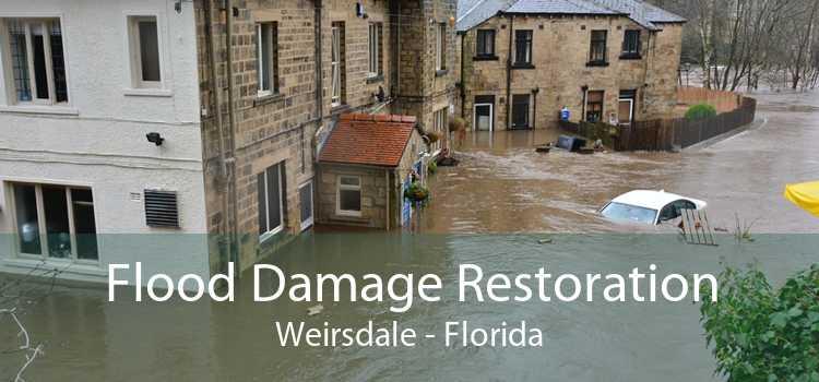 Flood Damage Restoration Weirsdale - Florida