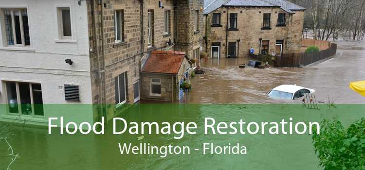 Flood Damage Restoration Wellington - Florida