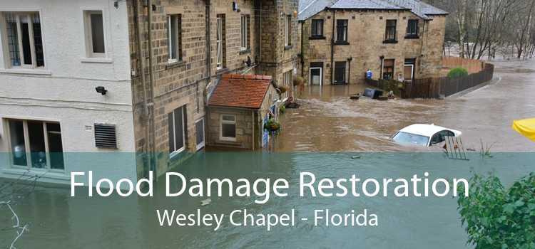 Flood Damage Restoration Wesley Chapel - Florida