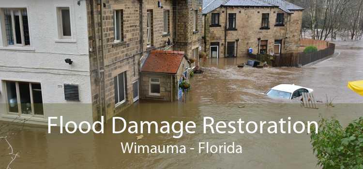 Flood Damage Restoration Wimauma - Florida