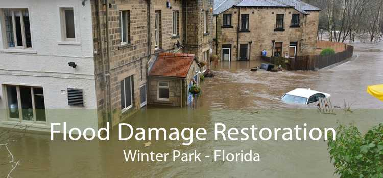 Flood Damage Restoration Winter Park - Florida
