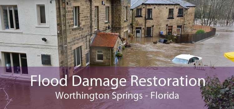 Flood Damage Restoration Worthington Springs - Florida