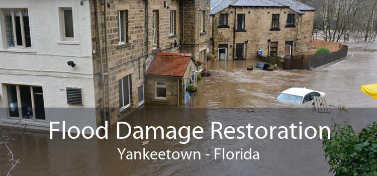 Flood Damage Restoration Yankeetown - Florida