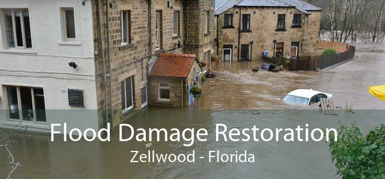 Flood Damage Restoration Zellwood - Florida