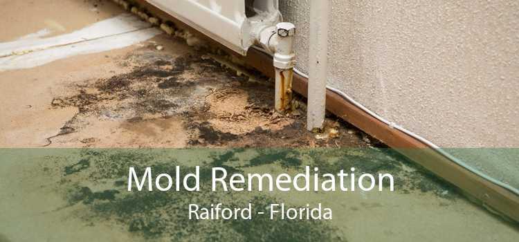 Mold Remediation Raiford - Florida