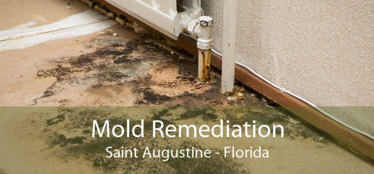 Mold Remediation Saint Augustine - Florida