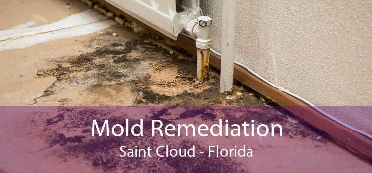 Mold Remediation Saint Cloud - Florida