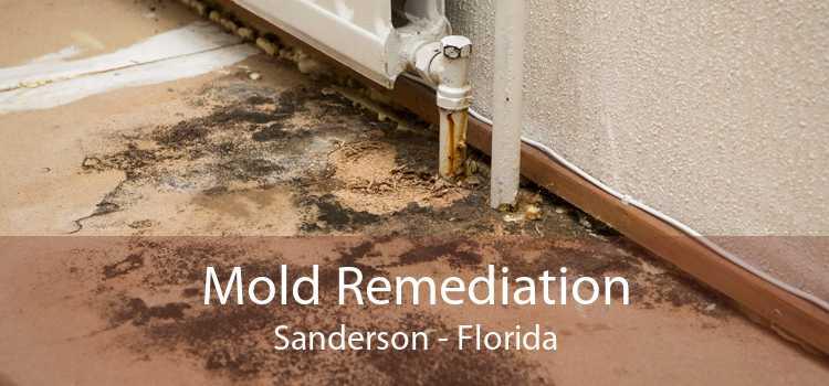 Mold Remediation Sanderson - Florida