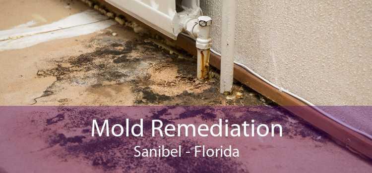 Mold Remediation Sanibel - Florida