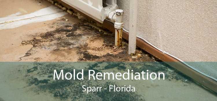 Mold Remediation Sparr - Florida