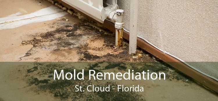 Mold Remediation St. Cloud - Florida