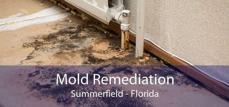 Mold Remediation Summerfield - Florida