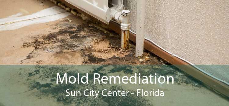 Mold Remediation Sun City Center - Florida