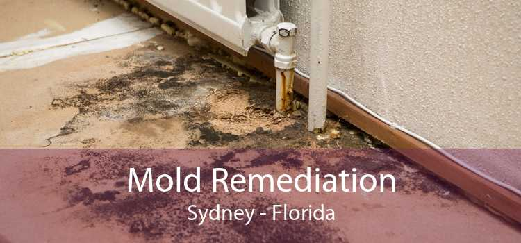 Mold Remediation Sydney - Florida