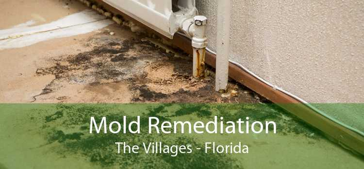 Mold Remediation The Villages - Florida
