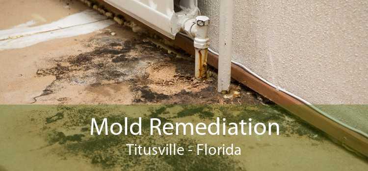 Mold Remediation Titusville - Florida