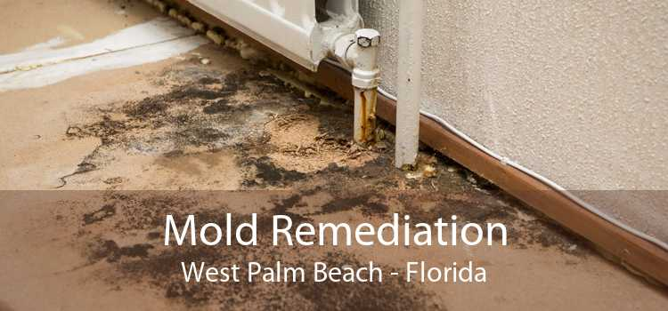 Mold Remediation West Palm Beach - Florida
