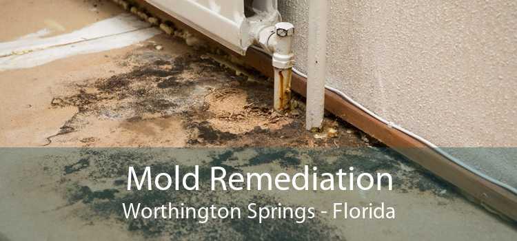 Mold Remediation Worthington Springs - Florida