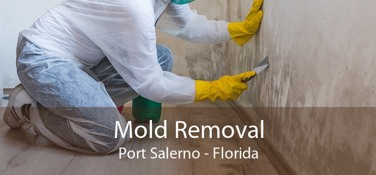 Mold Removal Port Salerno - Florida