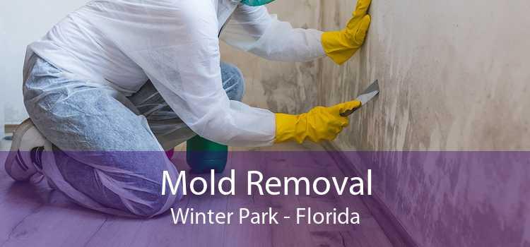 Mold Removal Winter Park - Florida