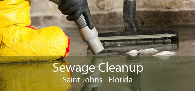 Sewage Cleanup Saint Johns - Florida