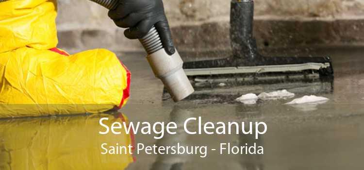Sewage Cleanup Saint Petersburg - Florida