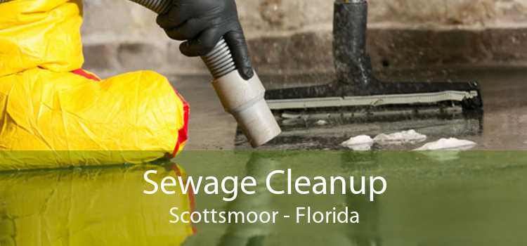 Sewage Cleanup Scottsmoor - Florida
