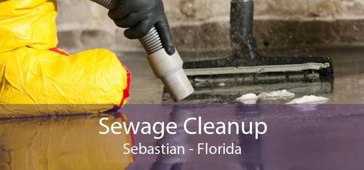 Sewage Cleanup Sebastian - Florida