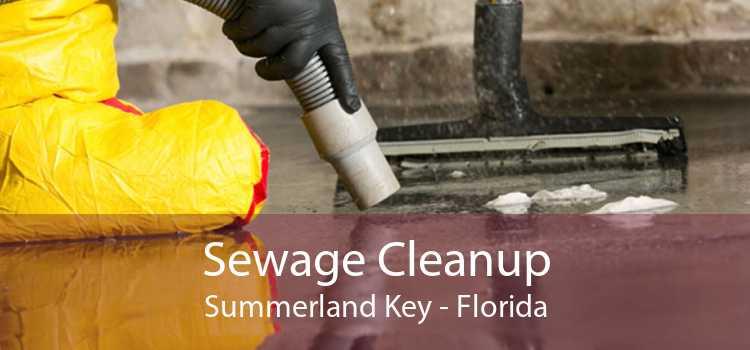Sewage Cleanup Summerland Key - Florida
