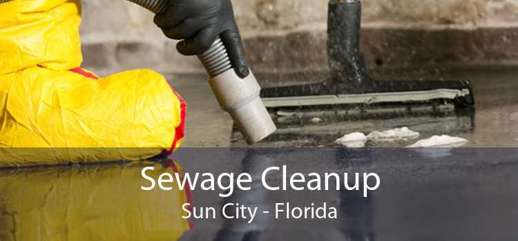 Sewage Cleanup Sun City - Florida