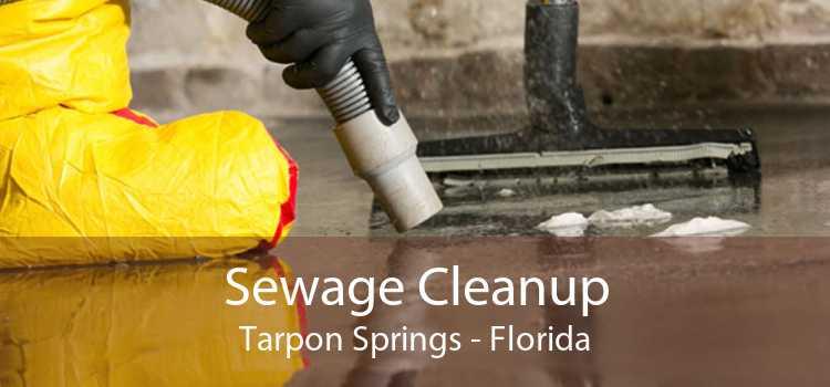 Sewage Cleanup Tarpon Springs - Florida