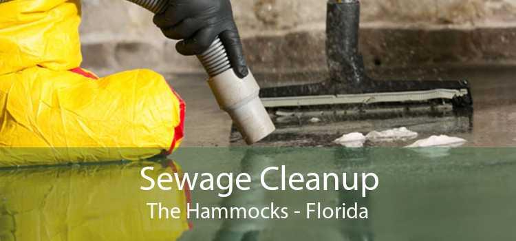 Sewage Cleanup The Hammocks - Florida