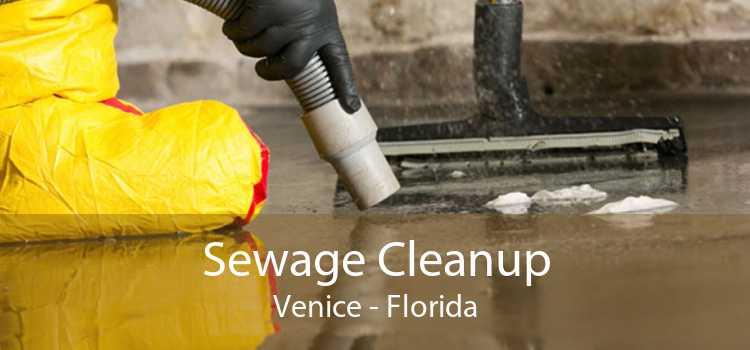 Sewage Cleanup Venice - Florida