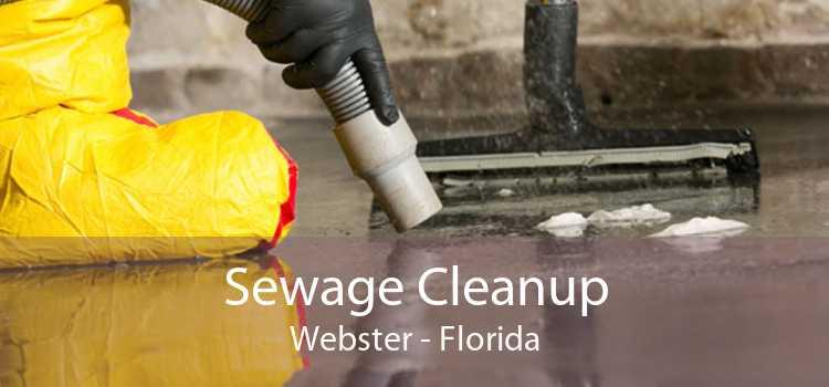 Sewage Cleanup Webster - Florida