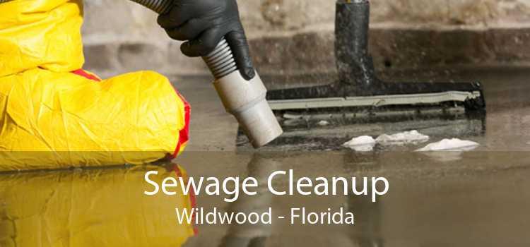 Sewage Cleanup Wildwood - Florida