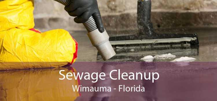 Sewage Cleanup Wimauma - Florida