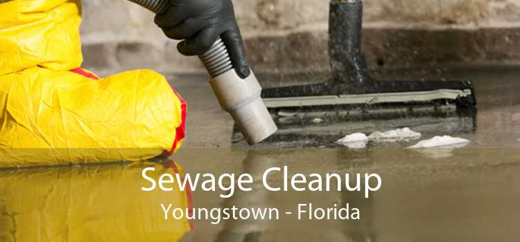 Sewage Cleanup Youngstown - Florida