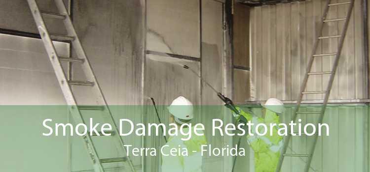Smoke Damage Restoration Terra Ceia - Florida