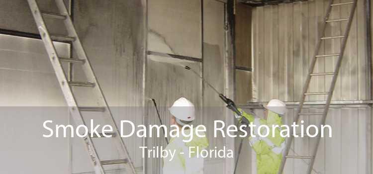Smoke Damage Restoration Trilby - Florida