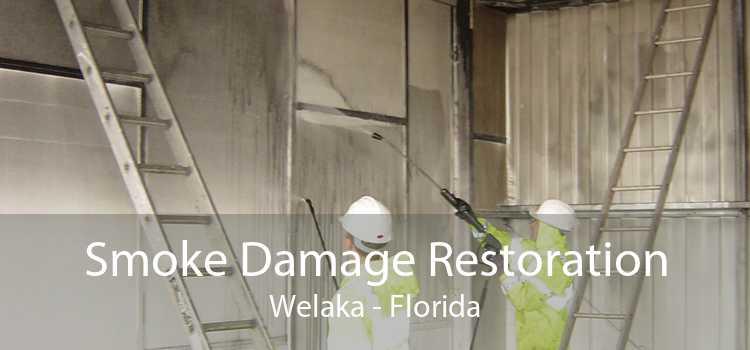 Smoke Damage Restoration Welaka - Florida