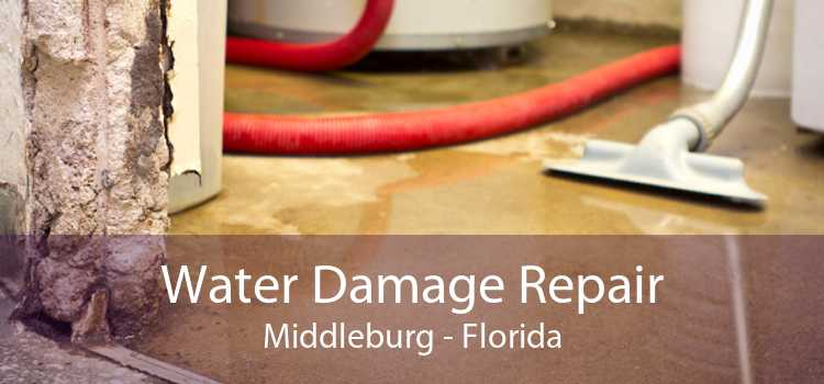 Water Damage Repair Middleburg - Florida