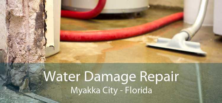 Water Damage Repair Myakka City - Florida
