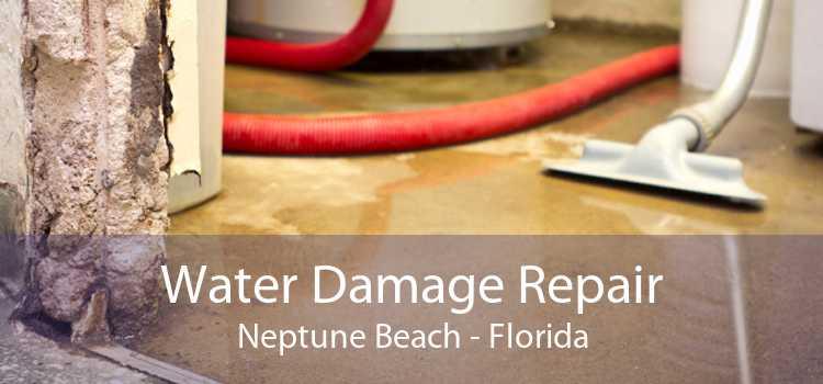 Water Damage Repair Neptune Beach - Florida