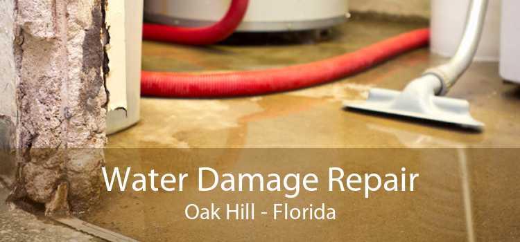 Water Damage Repair Oak Hill - Florida