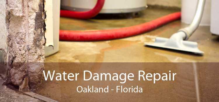 Water Damage Repair Oakland - Florida