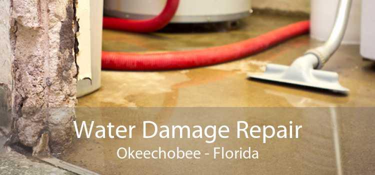 Water Damage Repair Okeechobee - Florida