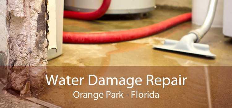 Water Damage Repair Orange Park - Florida